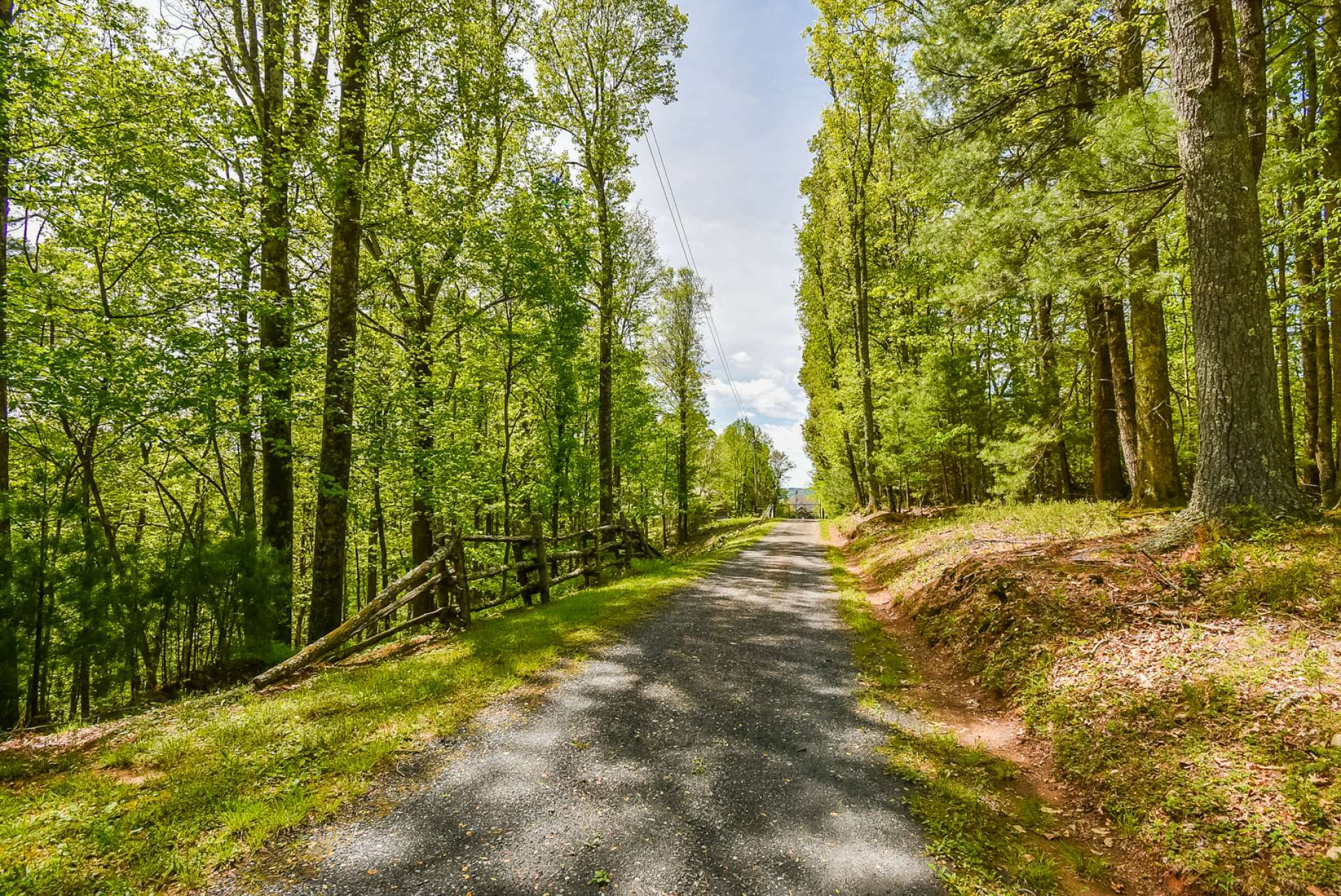 From the Parkway, a serene country graveled lane, canopied with native hardwoods and evergreens, leads you to the gated entrance.