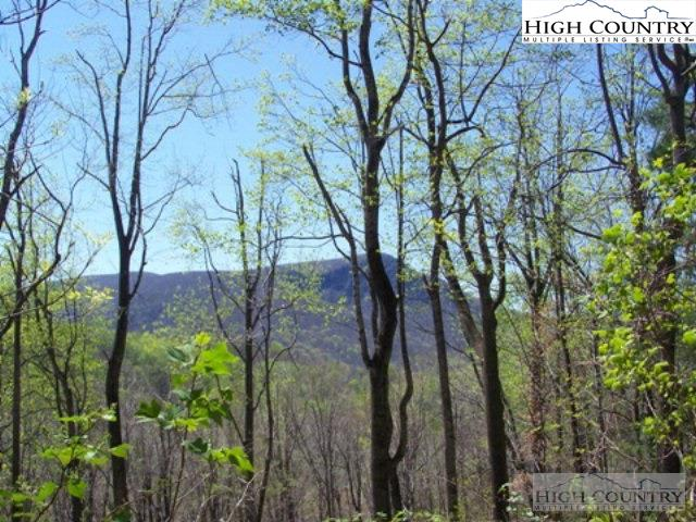 Lot 97 Buck Mountain Road