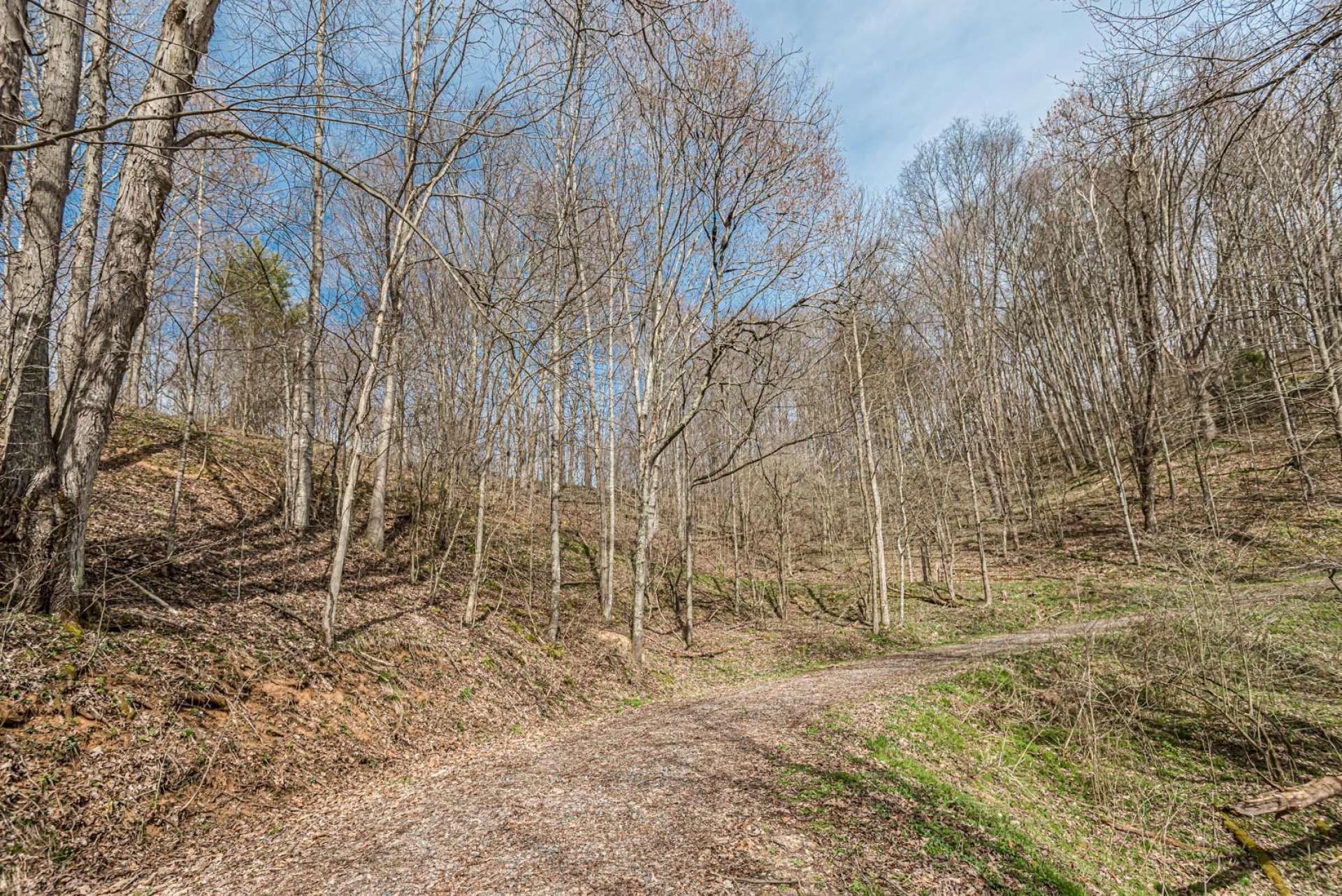 This property is ready for your cabin with homesite and driveway grading almost completed.