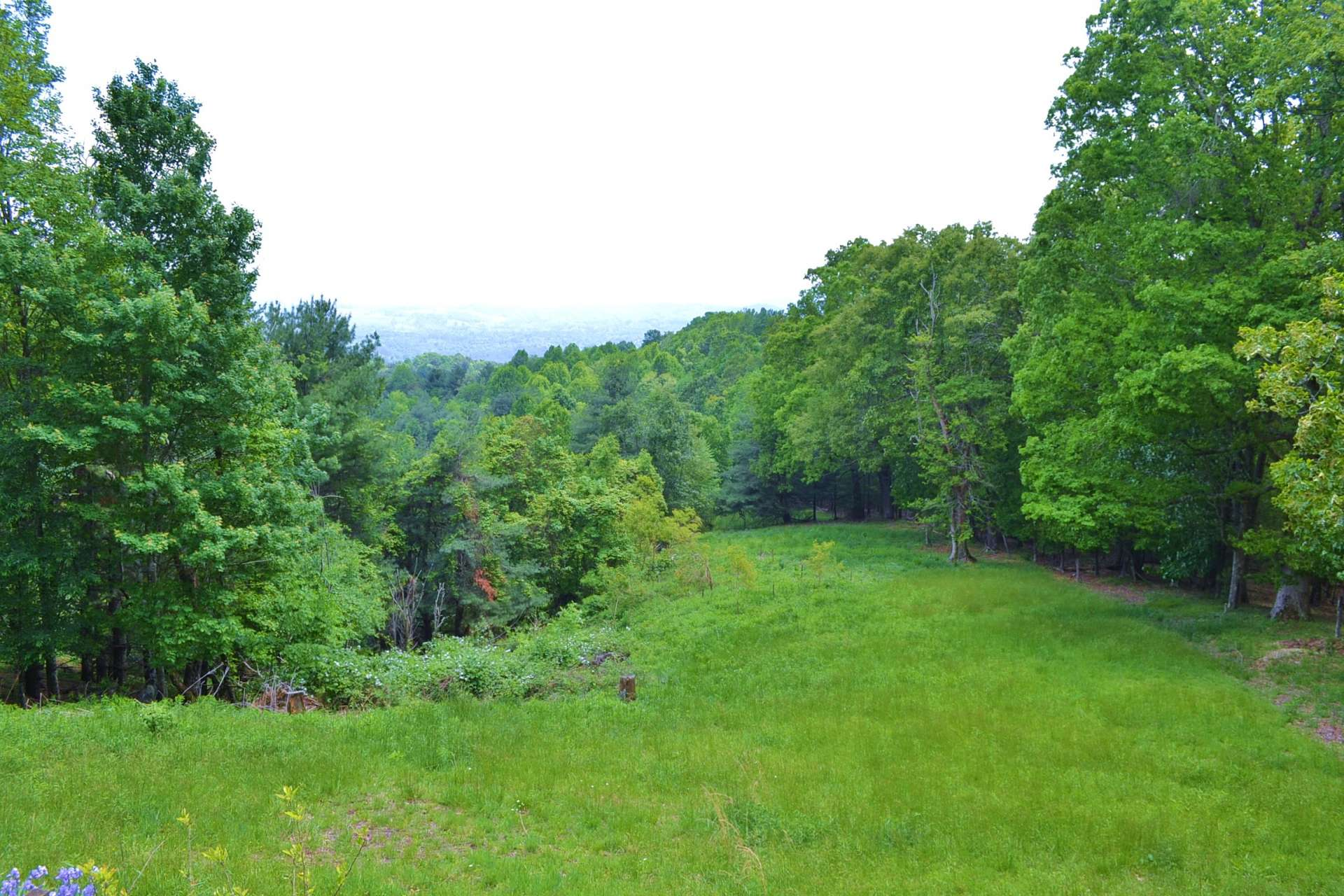 The land features plenty of open area for gardening or play. Surrounded by hardwoods, evergreens, and mountain foliage, you will enjoy watching the wildlife make routine visits to the property.