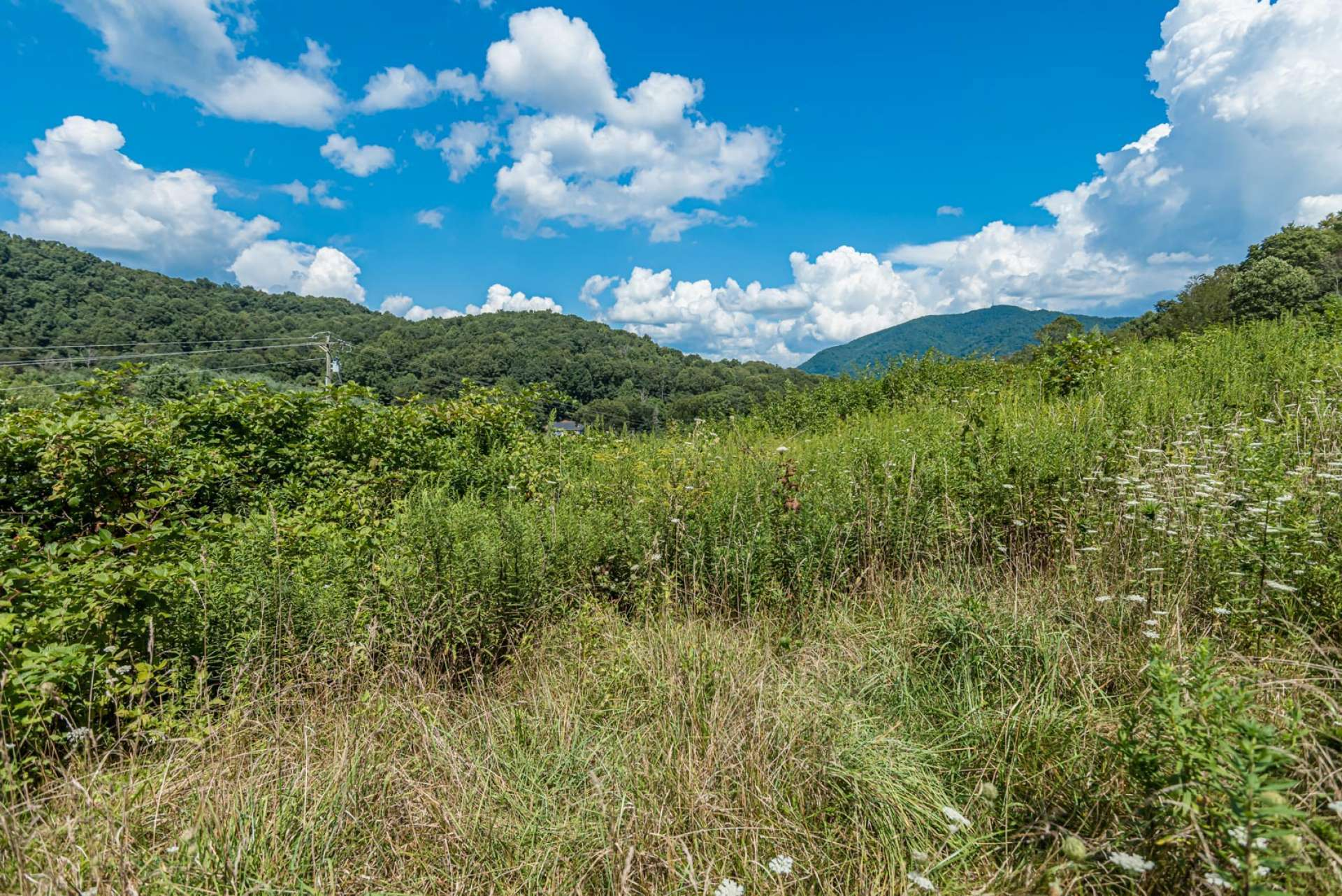 Imagine your dream NC Mountain home or cabin constructed here on this spot where you can enjoy the fresh mountain air, sounds of Nature,  and the long range views. This stunning tract is offered at $68,500. Call for information on listing  L239.