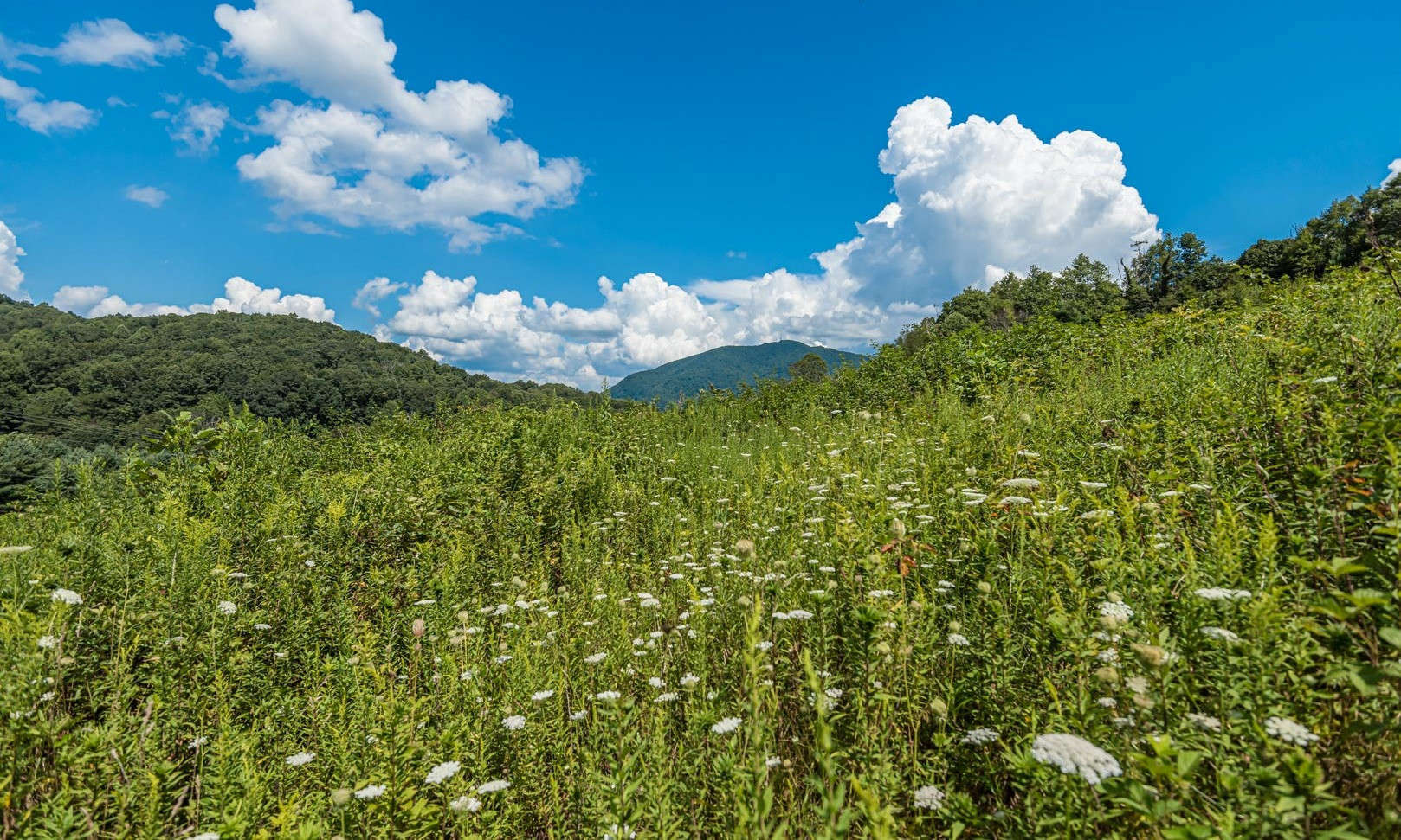 Located in the rolling hillsides of Ashe County, in the NC Mountains, this 6.7 acre tract offers the ideal location for the construction of your private North Carolina mountain cabin or home.