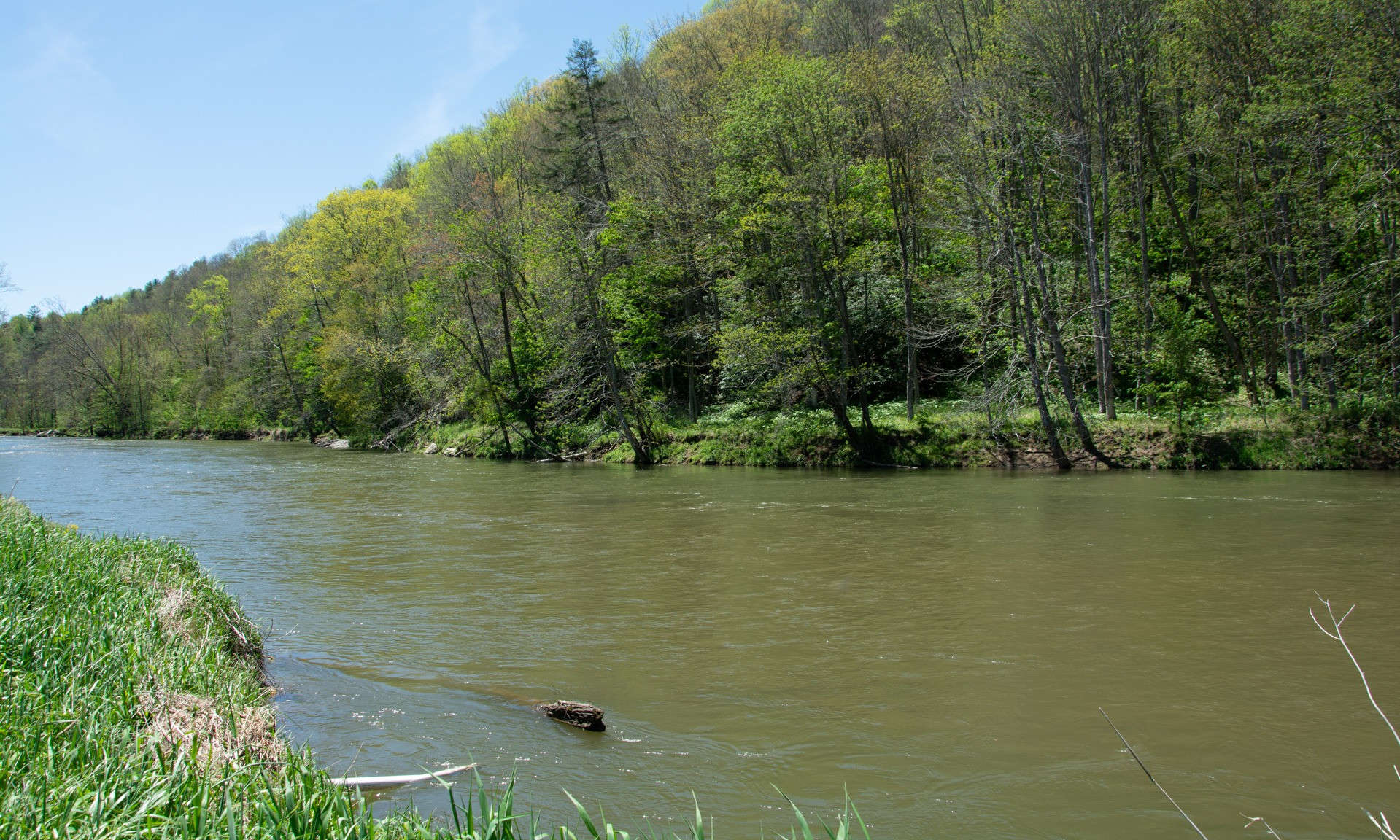 Unrestricted Riverfront NC Mountain Land