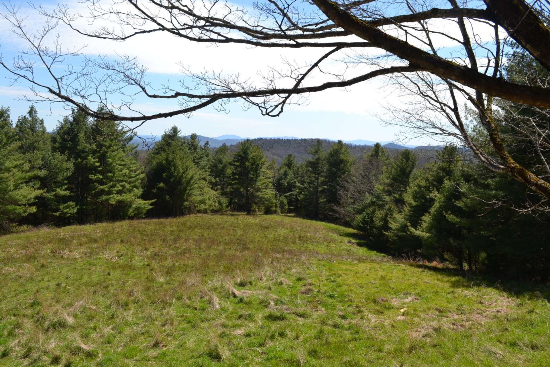Multiple home sites give you a choice of building your private mountain retreat to enjoy amazing Blue Ridge Mountain views or surrounded by hardwood forest where the only sound you hear is the call of a lone whippoorwill on the next ridge.