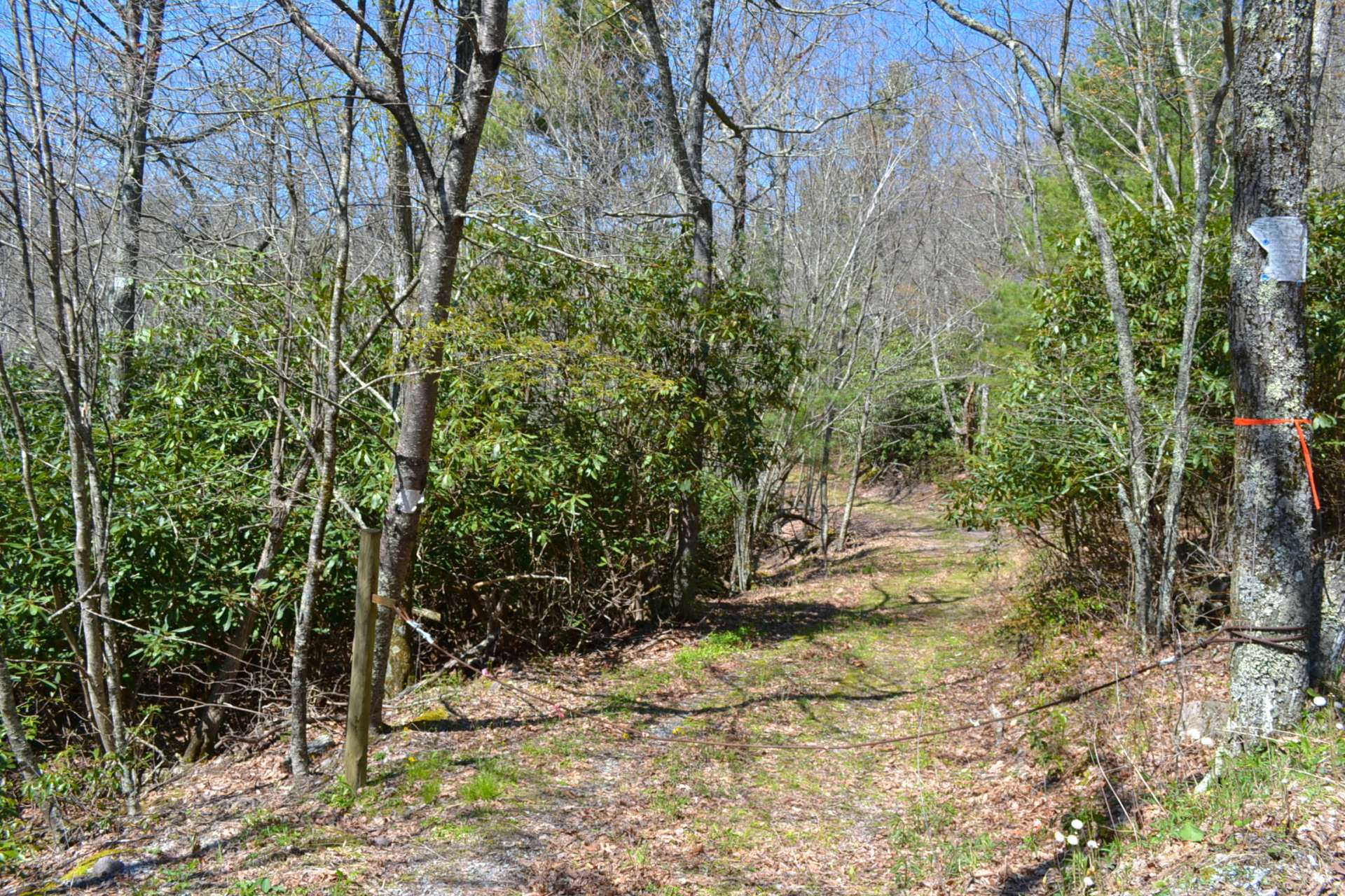 Accessed from a seldom travel country state maintained road, this tract is within walking distance of the Jefferson National Forest.